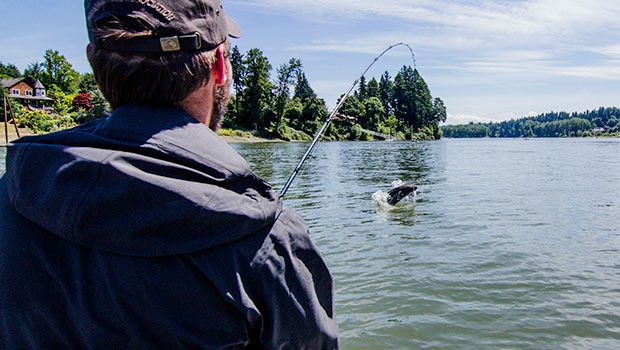 A salmon jumps in the air while being reeled in while fishing with guide Lance Fisher