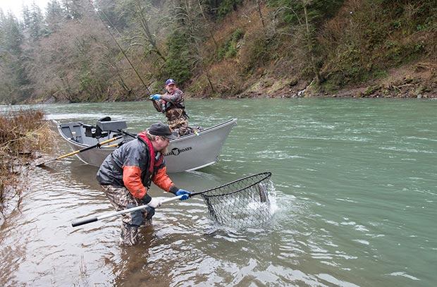 how to catch winter steelhead