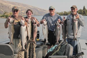 A limit of Fall Chinook Salmon caught at the mouth of the Klickitat River.