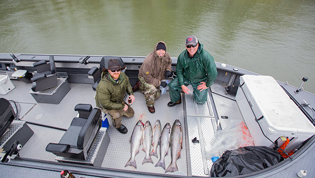 A nice limit of Columbia River Spring Chinook