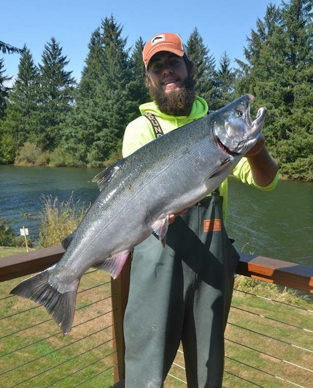 guide holding a huge Nehalem king salmon