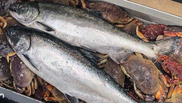Salmon and Crab in Tillamook